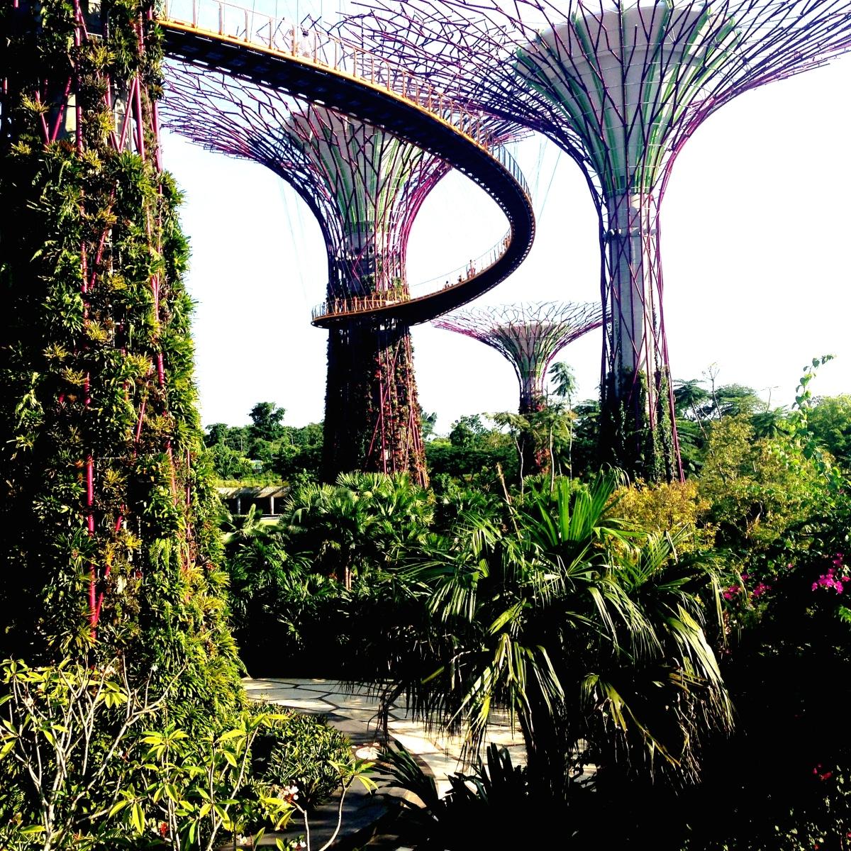 Top 18 miejsc i atrakcji turystycznych Singapuru!