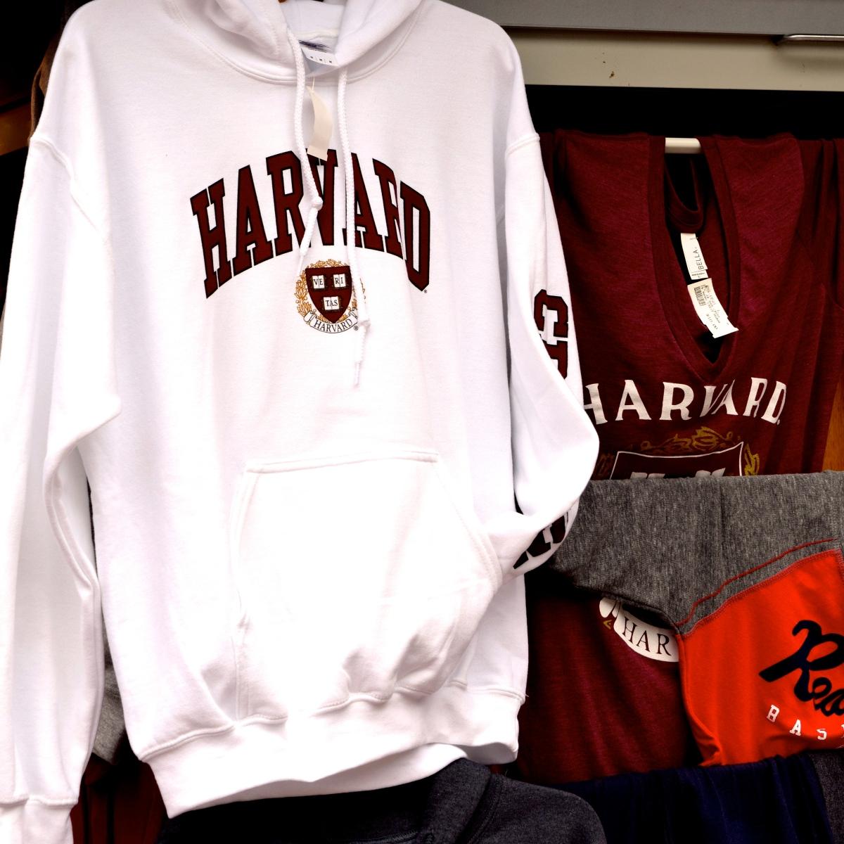Chcesz dostać się na Harvard, Stanford czy Yale? Oto wskazówki dla Ciebie!
